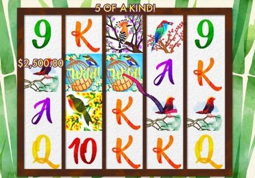 Игровые автоматы на реальные деньги с выводом - Birds and Blooms